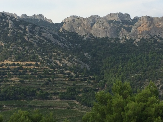 Domaine de Coyeux Winery in the Dentelles de Montmirail
