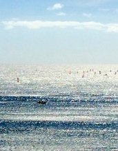 Wind Surfers in Morning Sparkle