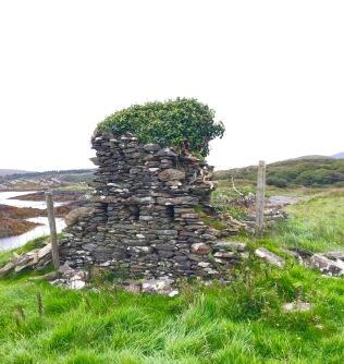 Veggie Capped Ruin